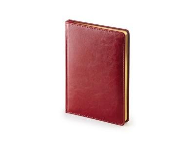 OA2003023427 Альт. Ежедневник А5 датированный Sidney Nebraska 2020, бордовый