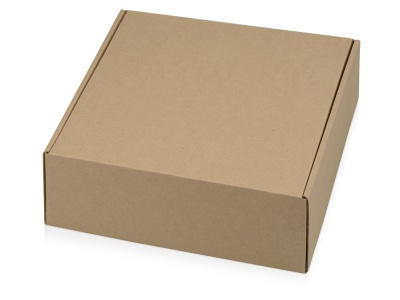 OA1701222956 Коробка подарочная Zand L, крафт