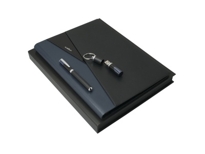OA200302763 Ungaro. Набор: флеш-карта, папка A4, ручка-роллер