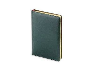 OA2003023421 Альт. Ежедневник А5 датированный Sidney Nebraska 2020, зеленый