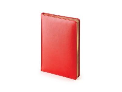 OA2003023425 Альт. Ежедневник А5 датированный Sidney Nebraska 2020, красный