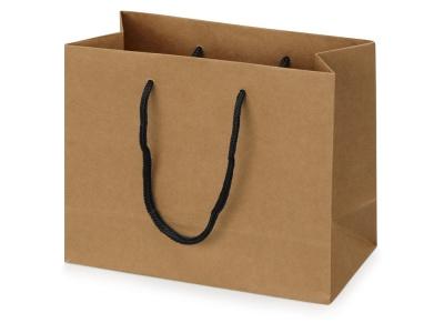 OA2003022369 Пакет подарочный Kraft XS, 23x19x10 см