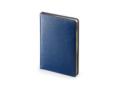 OA2003023422 Альт. Ежедневник А5 датированный Sidney Nebraska 2020, синий