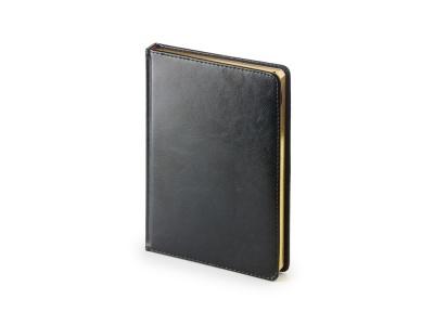 OA1907161 Альт. Ежедневник А5 датированный Sidney Nebraska 2020, черный