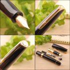 S0700980 Waterman Charleston *Перьевая ручка, цвет: Black/GT, перо: F (13001 F)